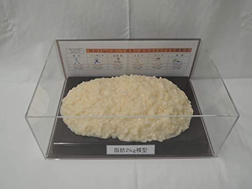 収益凝視ねばねば脂肪模型 フィギアケース入 2kg ダイエット 健康 肥満 トレーニング フードモデル 食品サンプル
