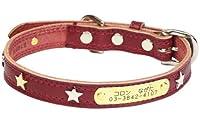 名前と電話番号が刻印可能 スターメタルIDカラー 28 レッド birdie バーディ 犬の首輪