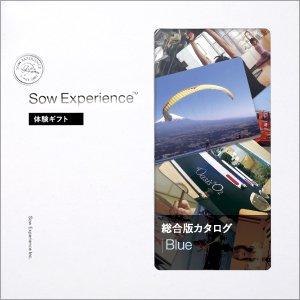 体験型カタログギフト 総合版カタログBlue (5,250円版)
