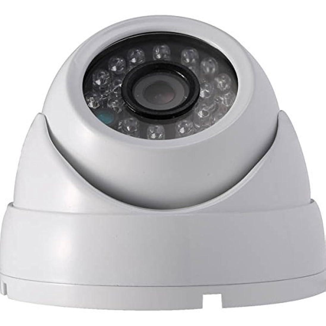 余分な吸い込む電話に出るNSK:ハイビジョン小型ドームカメラ NS-F202C NSK NS-F202C