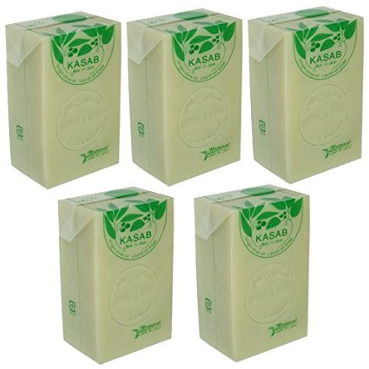 鷹電気的白いカサブ石鹸5個セット