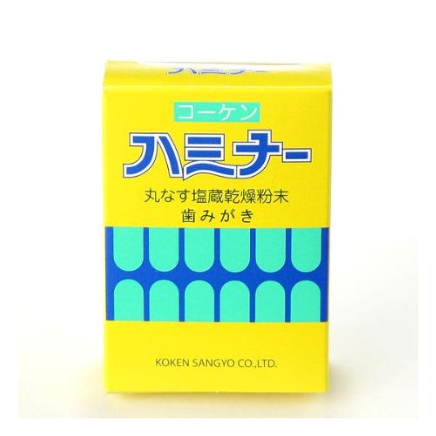 銃安全な咳ハミナー 40g