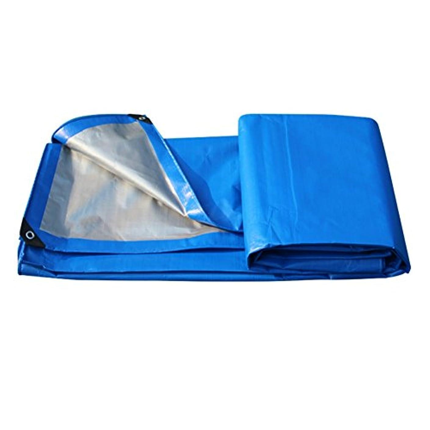 受益者難しい怖がって死ぬ36-dianyejiancai 防水シートの日よけの日焼け止めトラックは布の園芸の日よけの高温の暖かい老化防止を流しましたか。屋外防水シート (Color : Blue+gray, サイズ : 6x10M)