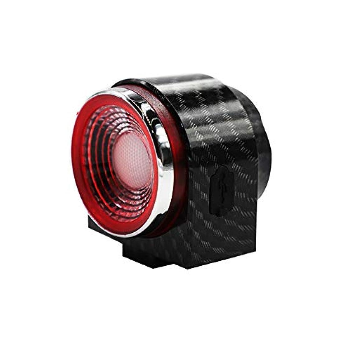 緩める契約サバントA6S 自転車盗難防止警報テールライト、ワイヤレススピーカーライト、USB充電 夜の乗馬スマートテールライト