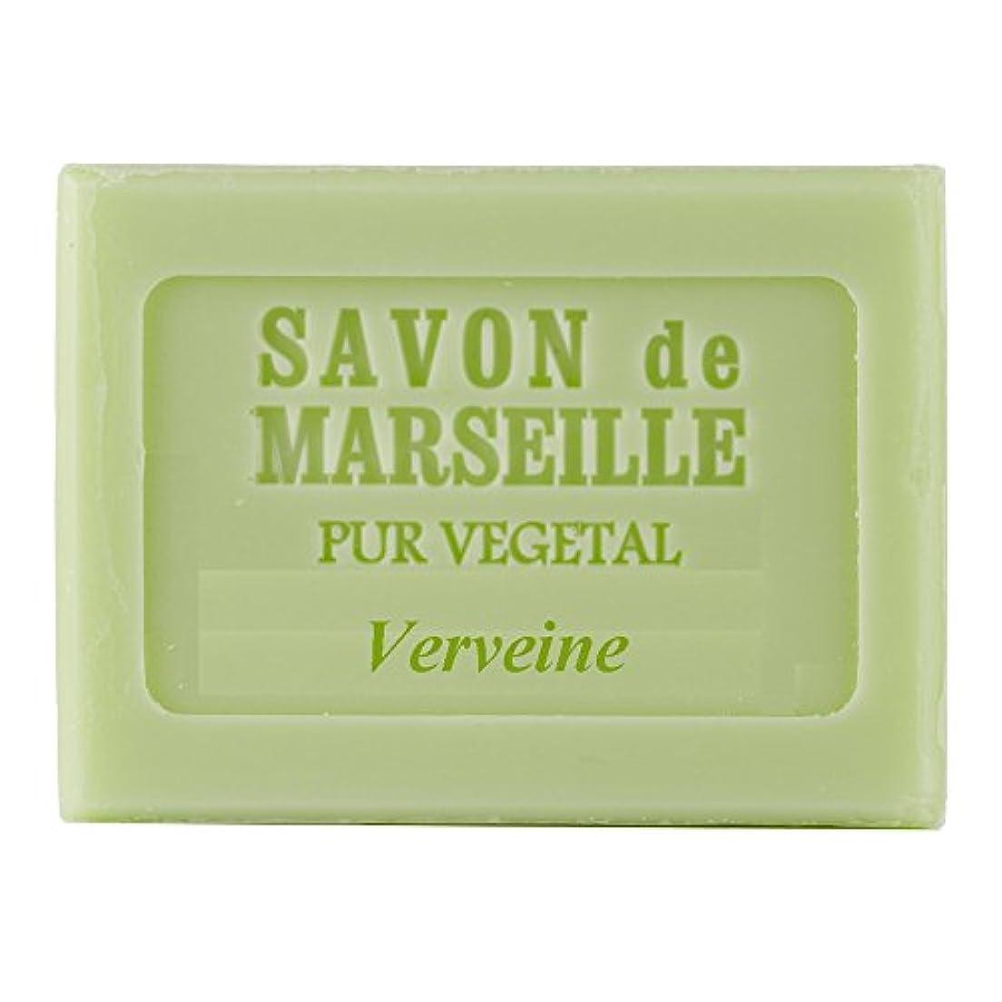 エキス手荷物曖昧なPlantes&Parfums マルセイユソープ 100g バーベナ 009956