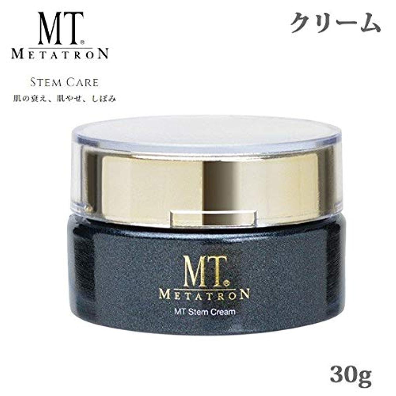 冊子安全性淡いMT ステイムクリーム 30g