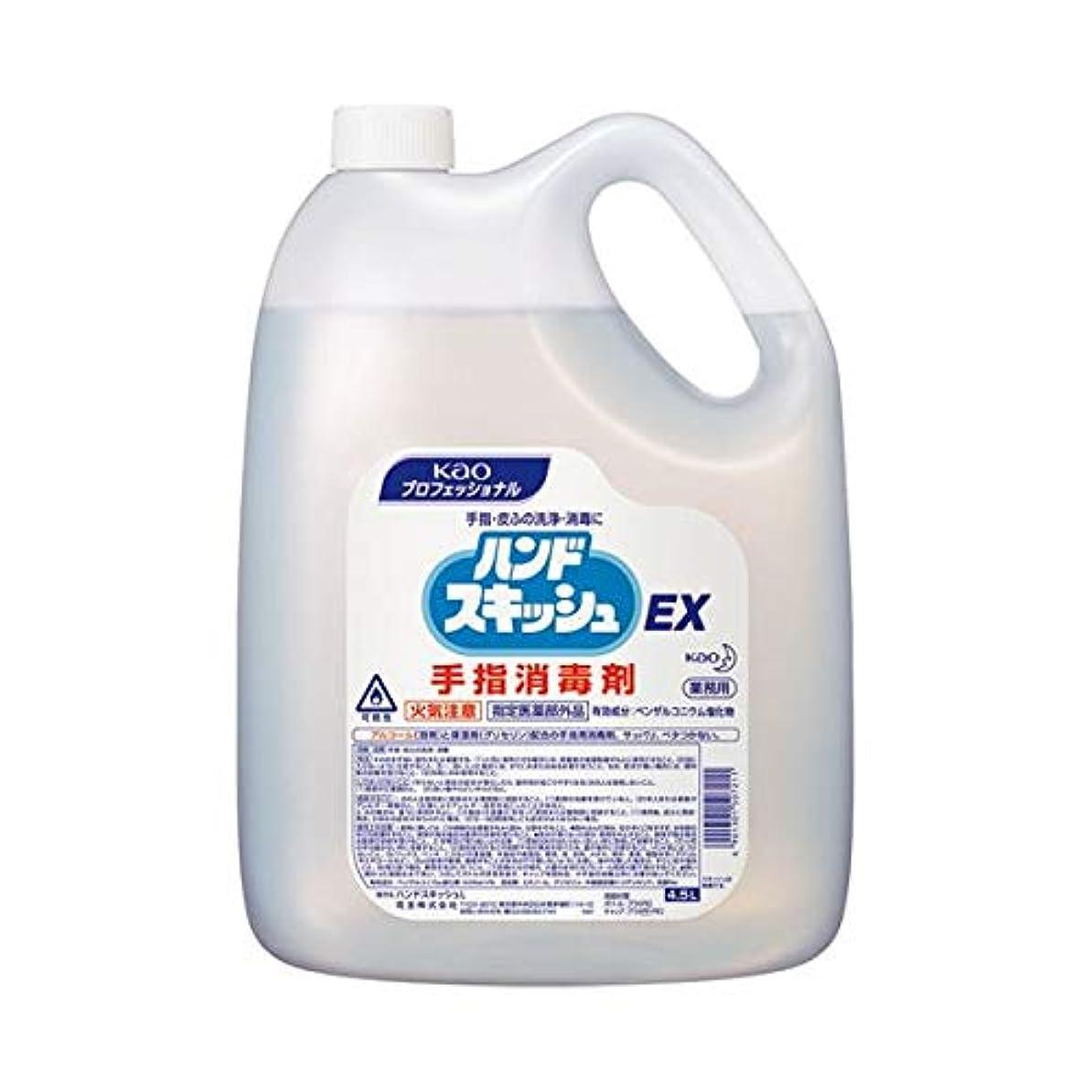 化学薬品子羊つかいます(まとめ)花王 ハンドスキッシュEX 4.5L507211【×5セット】 ダイエット 健康 衛生用品 ハンドソープ 14067381 [並行輸入品]