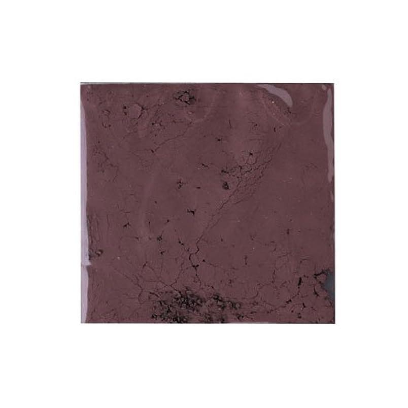 なぞらえる手のひらスリップシューズピカエース ネイル用パウダー ピカエース カラーパウダー 着色顔料 #785 チョコレートブラウン 2g アート材