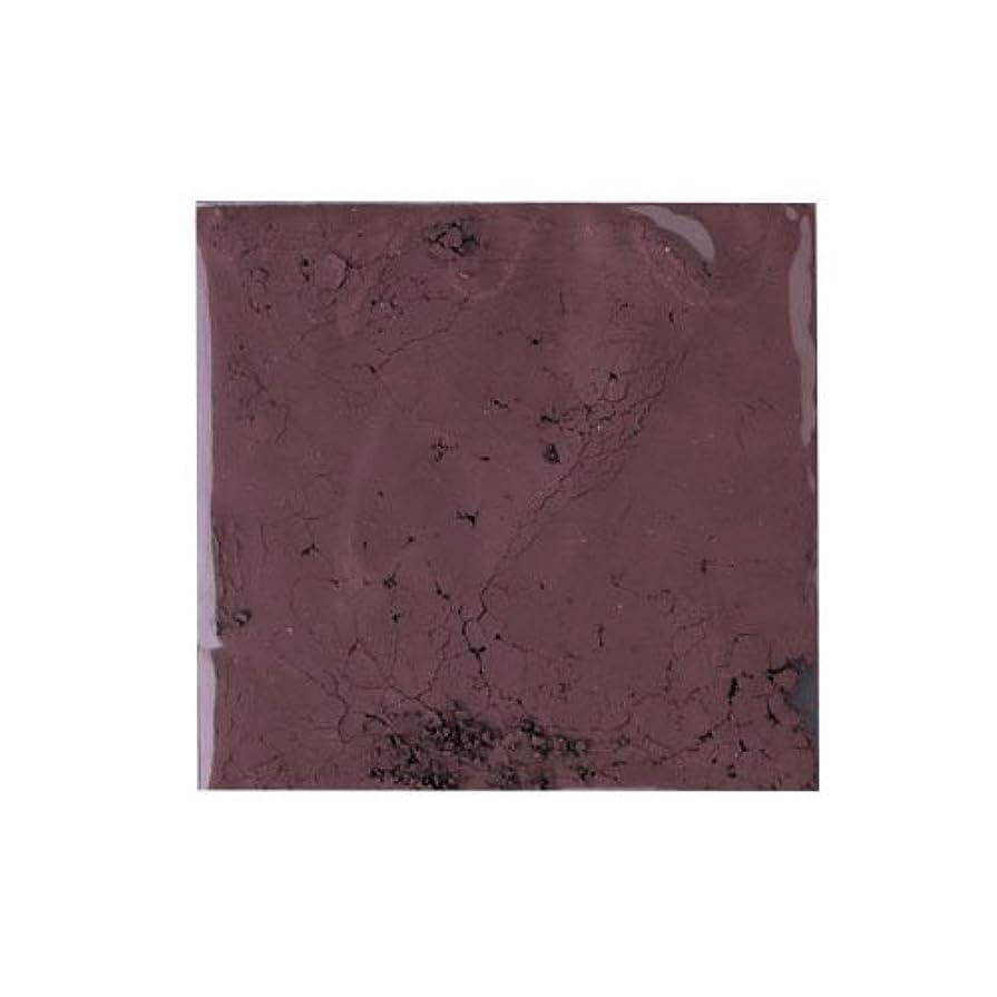 たるみ露骨なためにピカエース ネイル用パウダー ピカエース カラーパウダー 着色顔料 #785 チョコレートブラウン 2g アート材