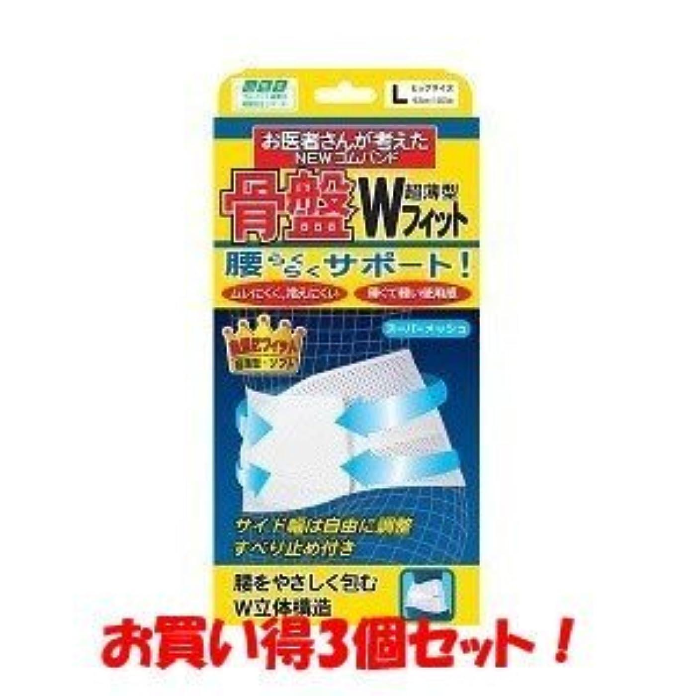 新着ミンチ甘味(ミノウラ)山田式 骨盤Wフィット L(お買い得3個セット)