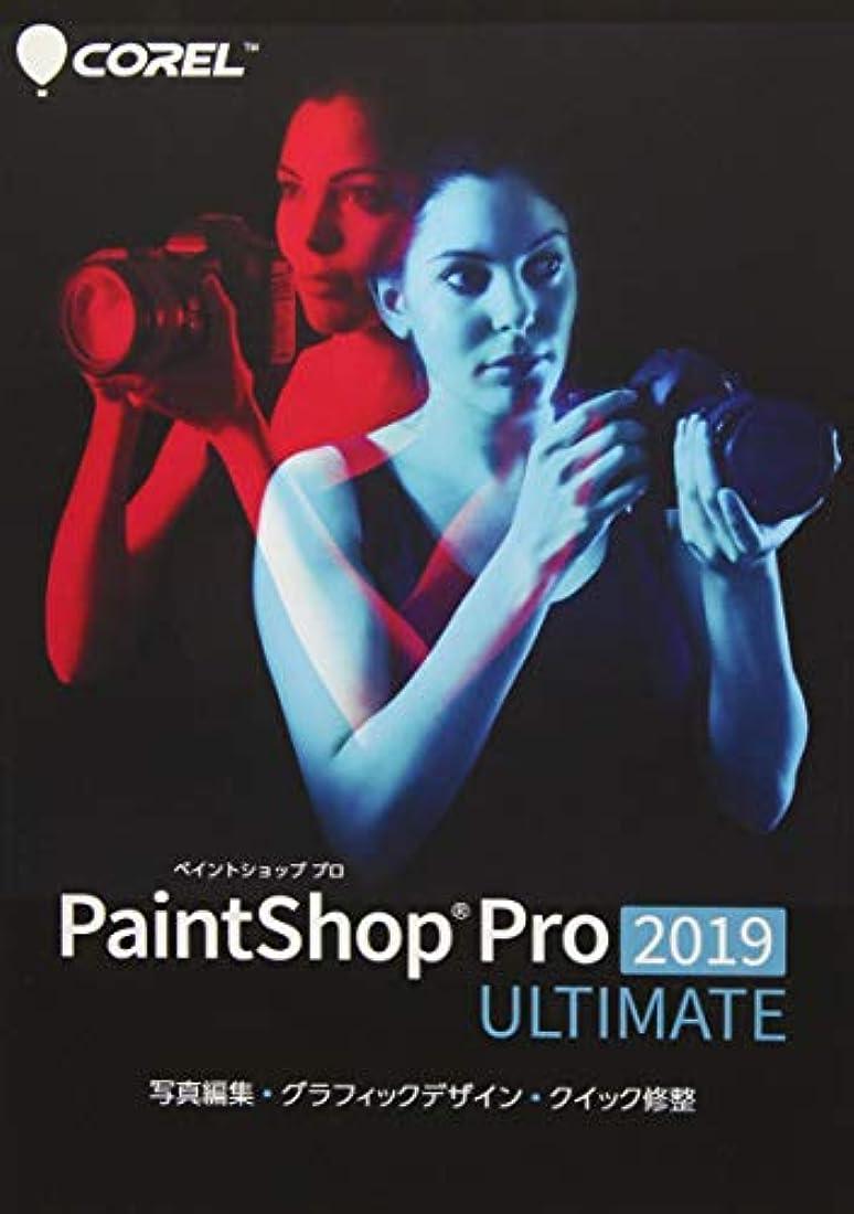 ぐるぐる不良飛行機PaintShop Pro 2019 Ultimate