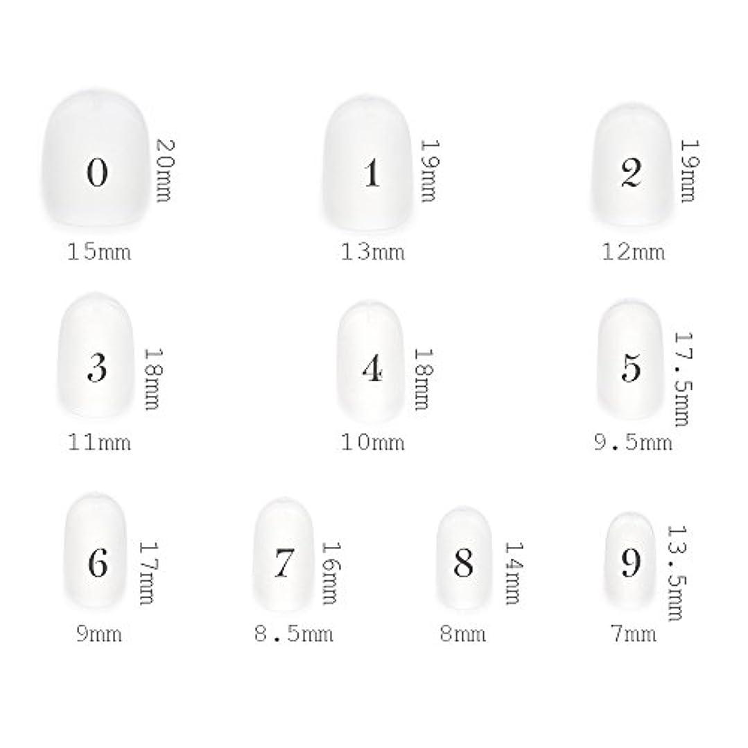 相互接続電話をかけるさせるショートラウンド型 クリアネイルチップ サンディング加工あり 500枚入り 10サイズ?各50枚
