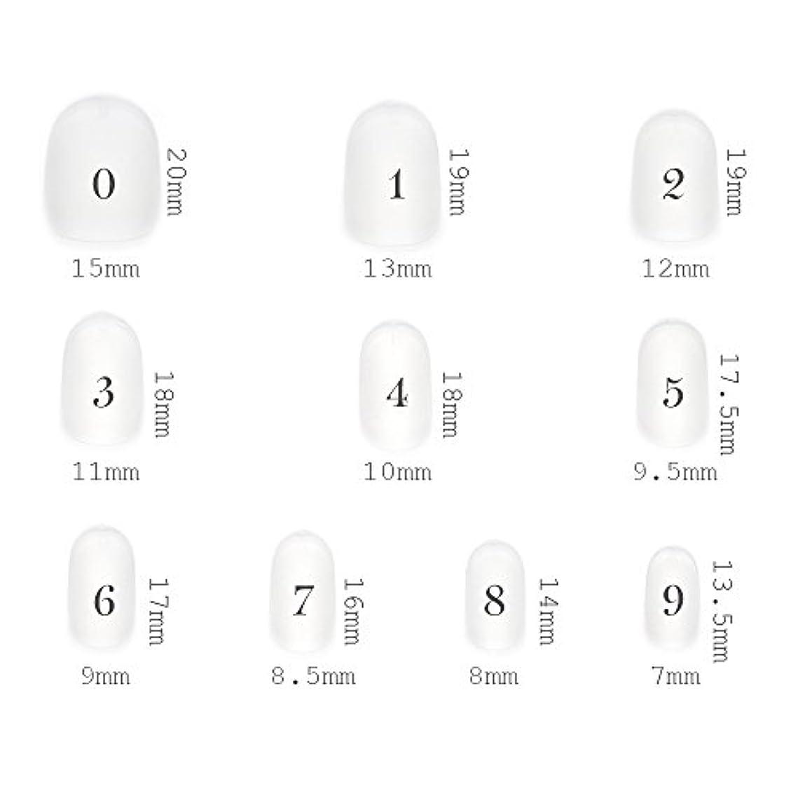 メニューひばりトリップショートラウンド型 クリアネイルチップ サンディング加工あり 500枚入り 10サイズ?各50枚