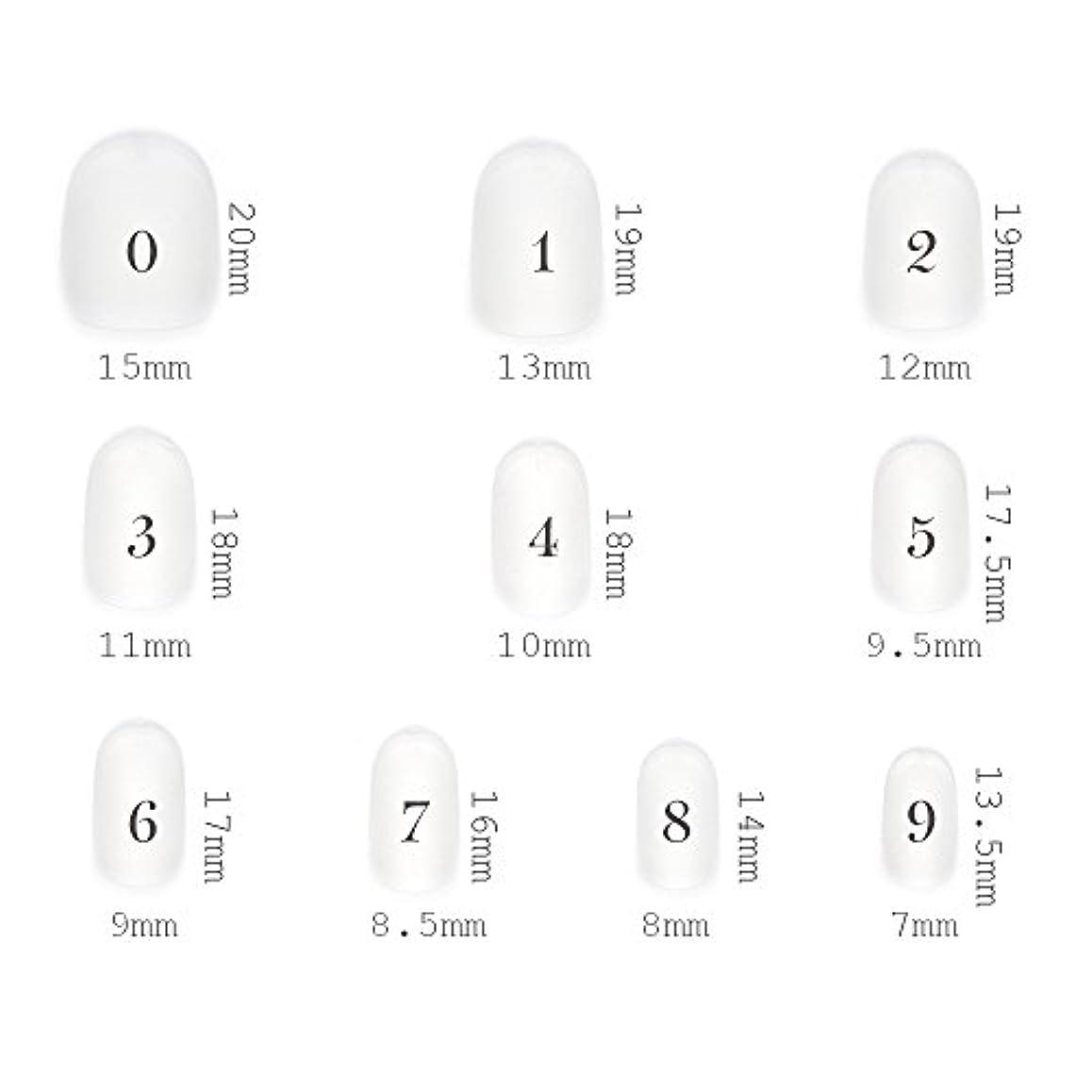 福祉物思いにふける申し立てるショートラウンド型 クリアネイルチップ サンディング加工あり 500枚入り 10サイズ?各50枚