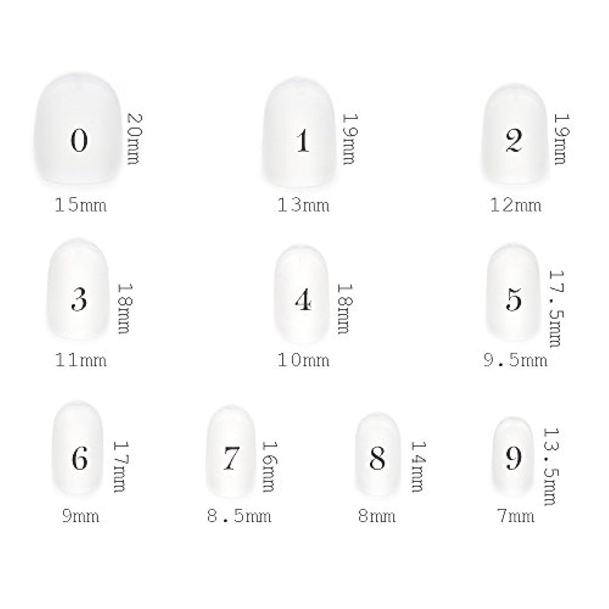 紫のまとめる見積りショートラウンド型 クリアネイルチップ サンディング加工あり 500枚入り 10サイズ?各50枚