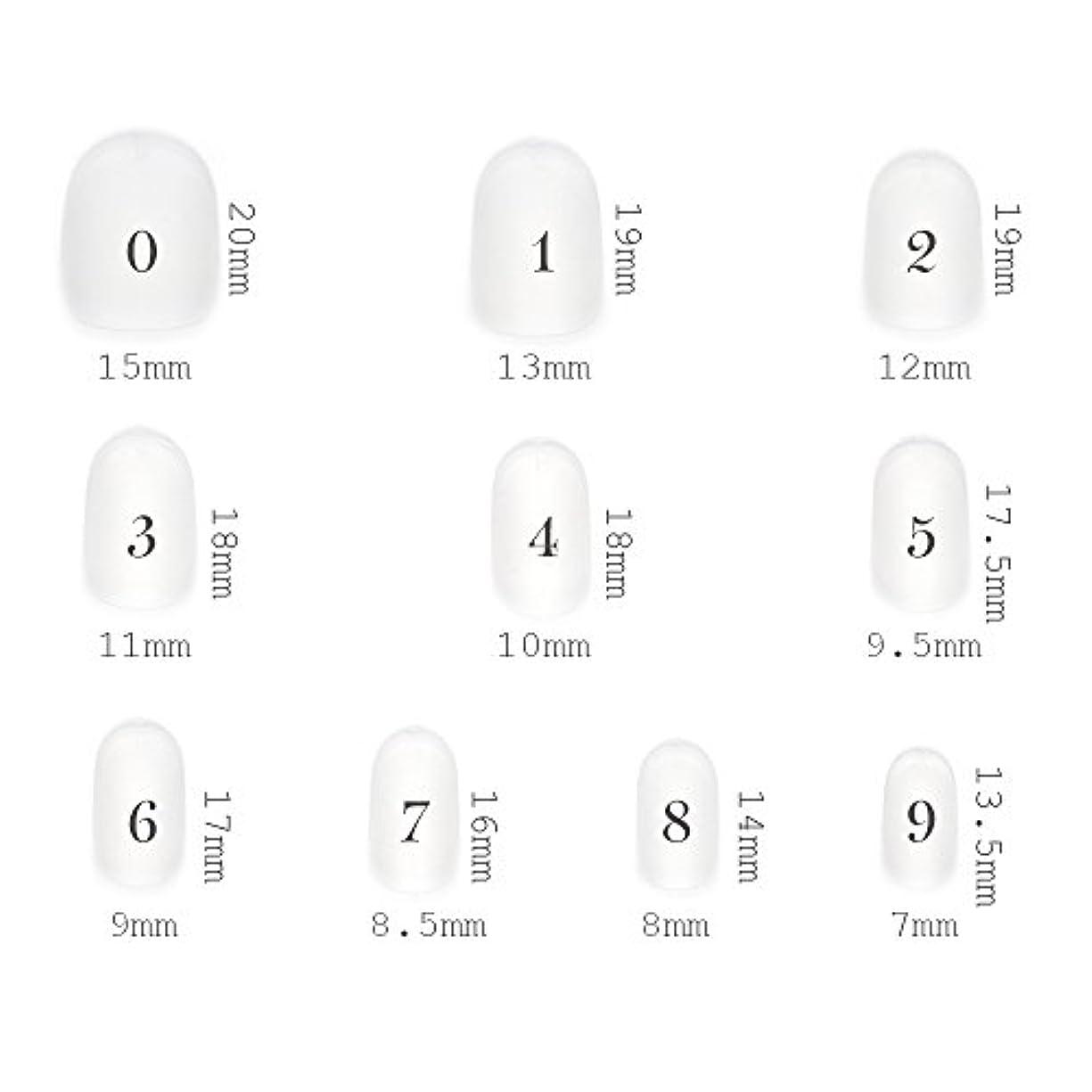 アルプス戦略今ショートラウンド型 クリアネイルチップ サンディング加工なし 透明 500枚入り 10サイズ各50枚
