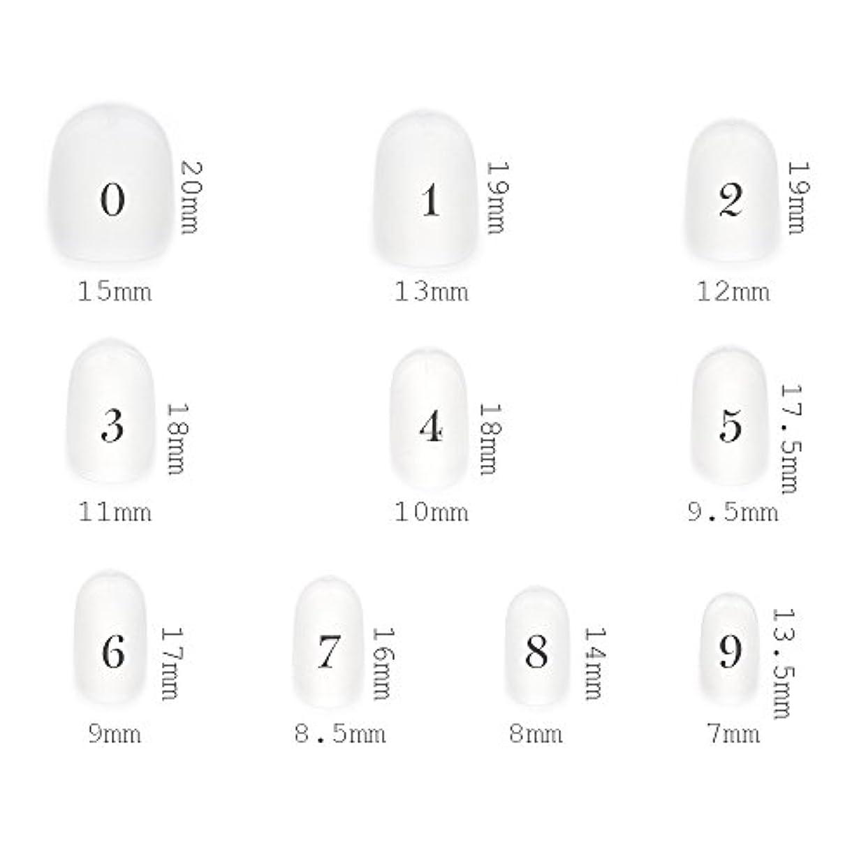 丘グレードフローティングショートラウンド型 クリアネイルチップ サンディング加工あり 500枚入り 10サイズ・各50枚