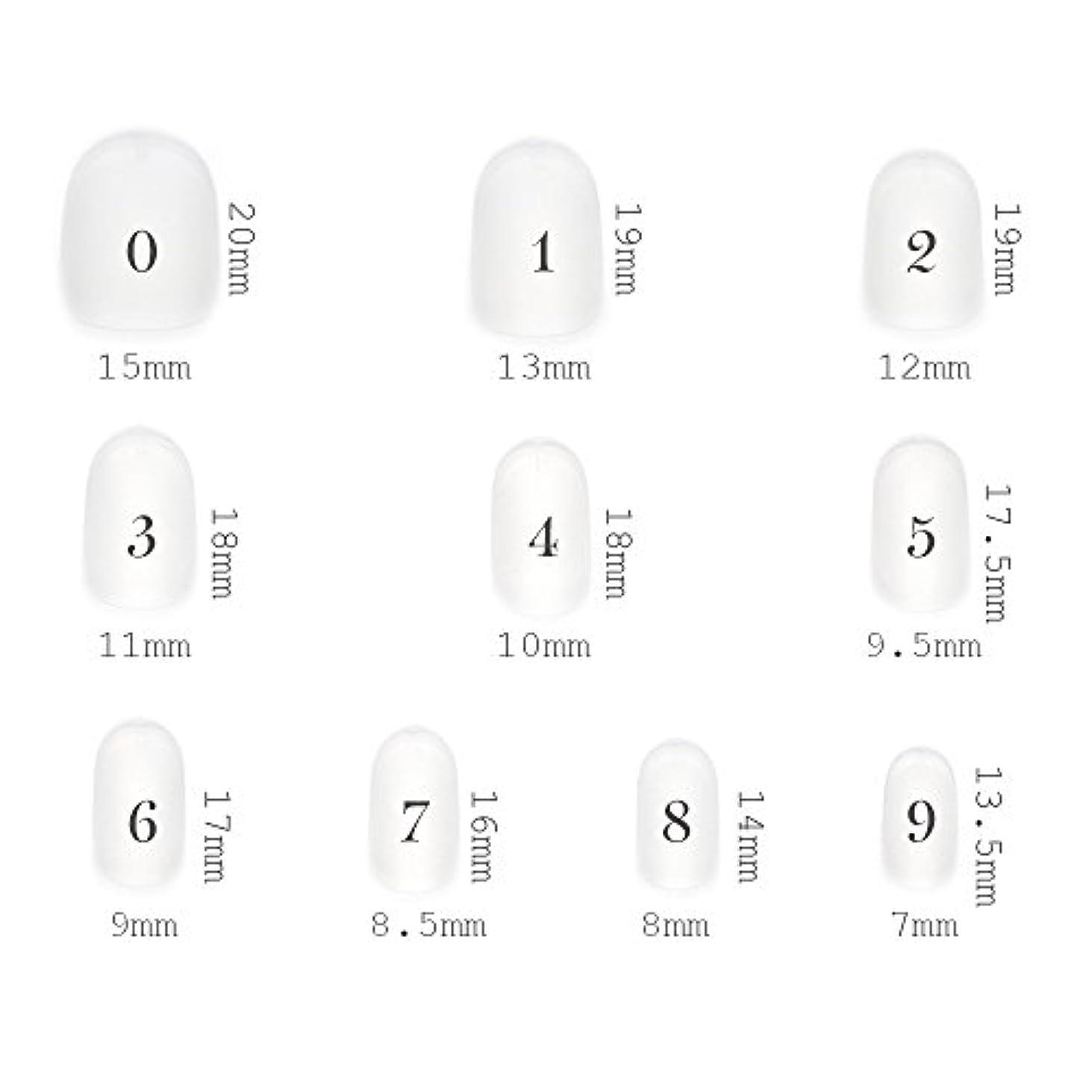 リーダーシップオリエント硬いショートラウンド型 クリアネイルチップ サンディング加工なし 透明 500枚入り 10サイズ各50枚