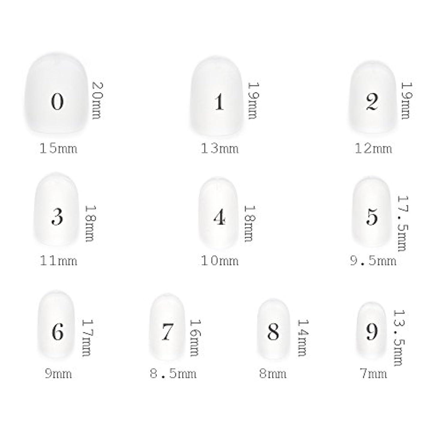 適合カポック昆虫ショートラウンド型 クリアネイルチップ サンディング加工あり 500枚入り 10サイズ?各50枚