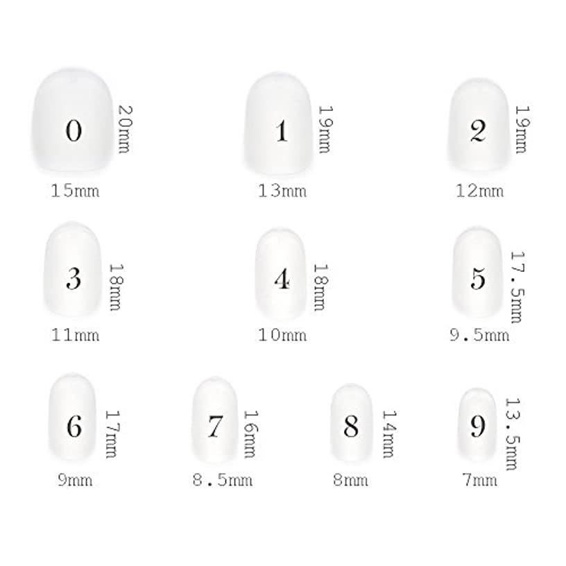 に対応するホイッスル白内障ショートラウンド型 クリアネイルチップ サンディング加工なし 透明 500枚入り 10サイズ各50枚
