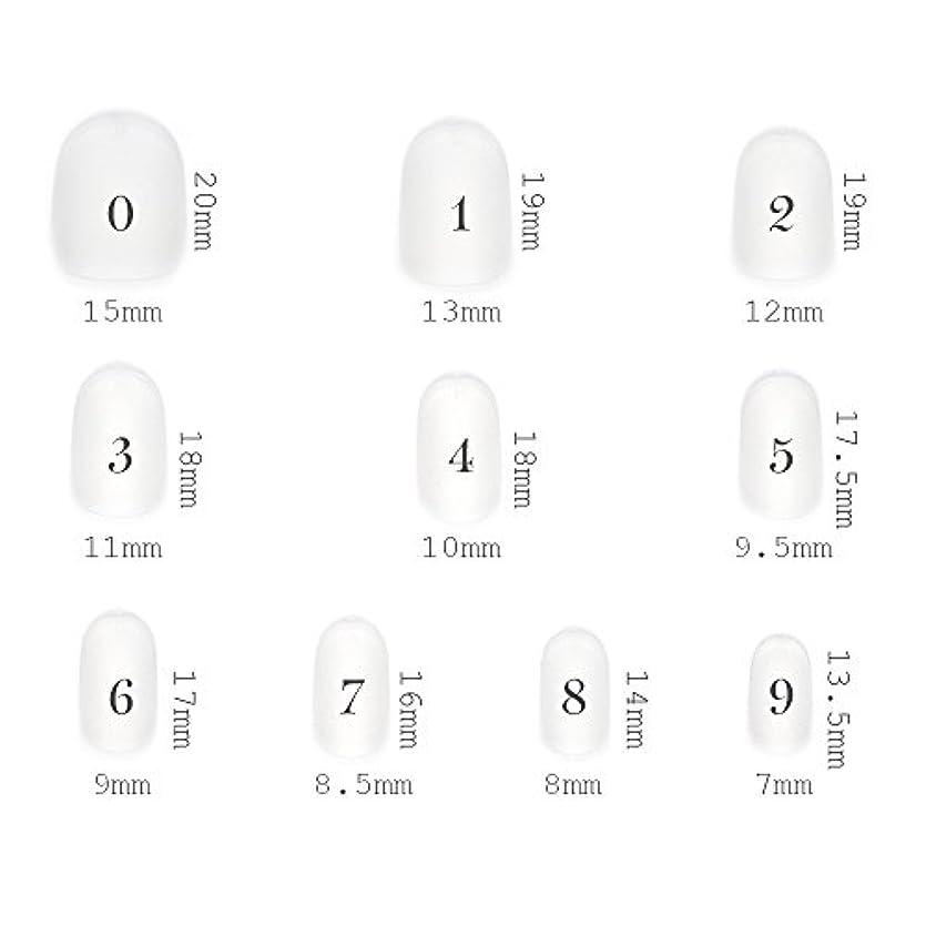 海港適度なオーナーショートラウンド型 クリアネイルチップ サンディング加工あり 500枚入り 10サイズ?各50枚