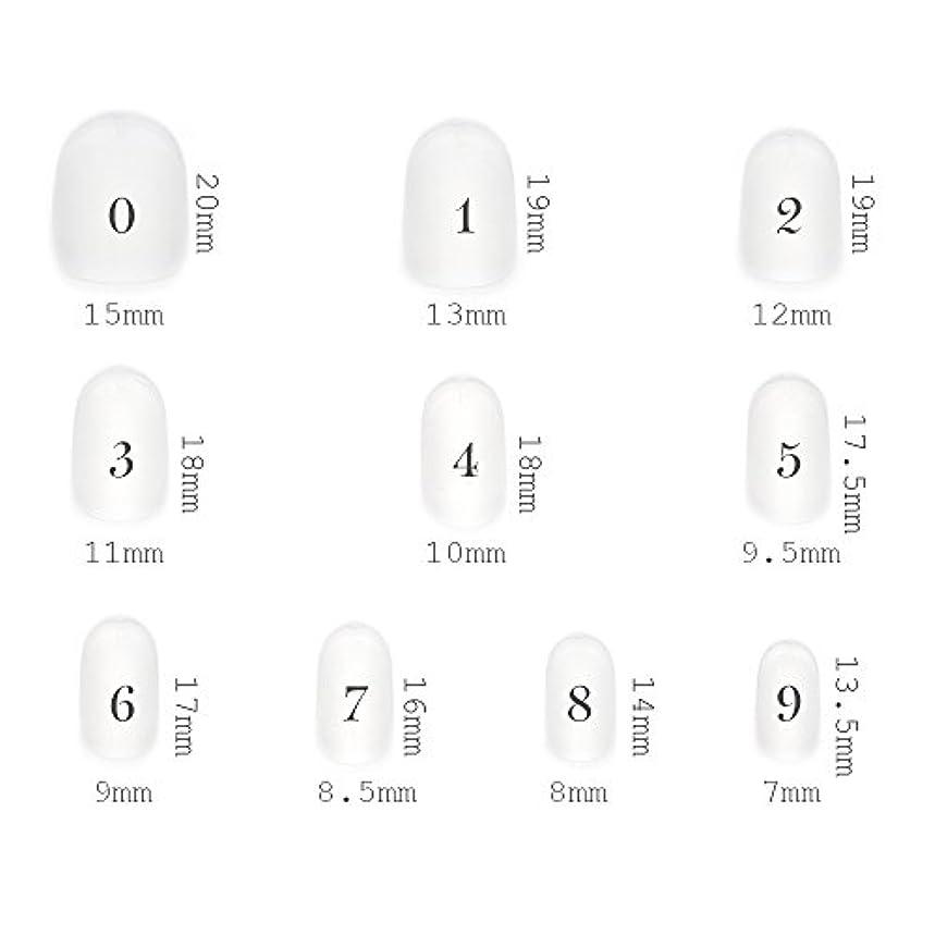 神社杭野望ショートラウンド型 クリアネイルチップ サンディング加工あり 500枚入り 10サイズ?各50枚