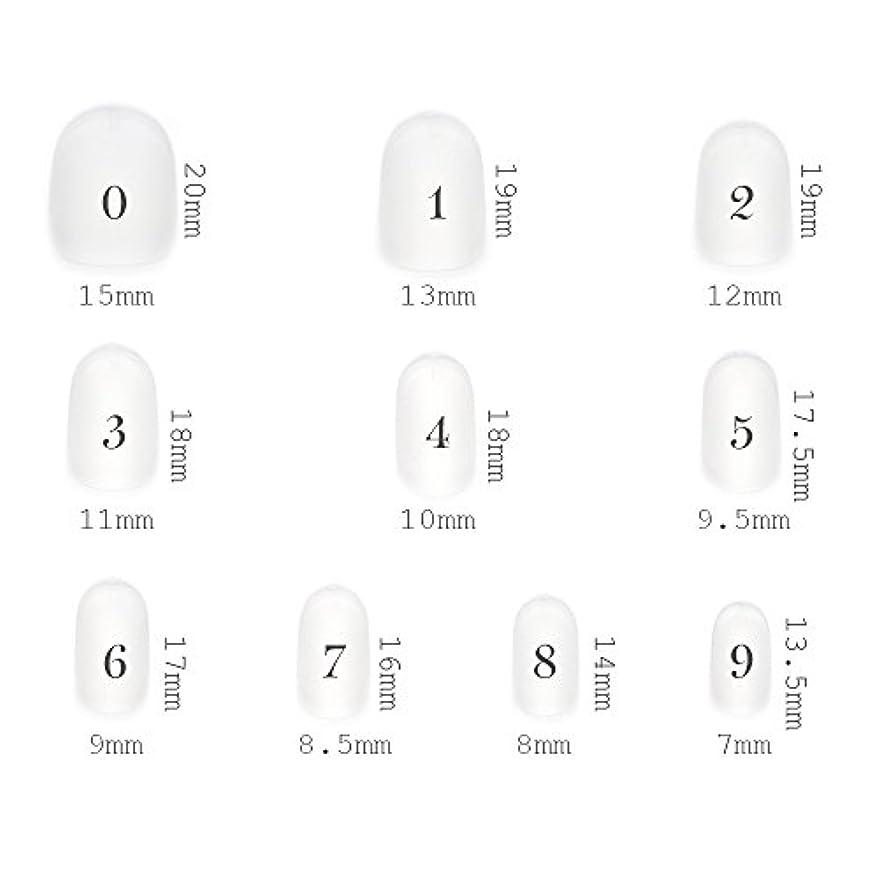 アウター主婦誰のショートラウンド型 クリアネイルチップ サンディング加工なし 透明 500枚入り 10サイズ各50枚