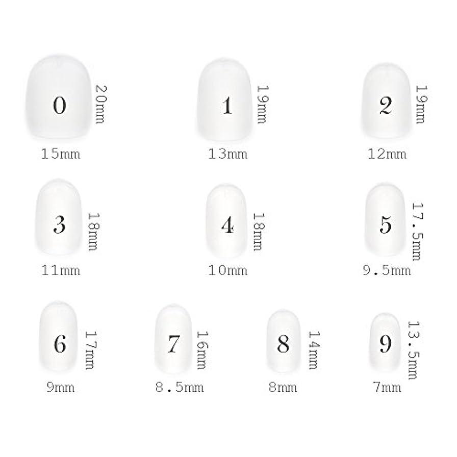 編集者スペード慈悲深いショートラウンド型 クリアネイルチップ サンディング加工なし 透明 500枚入り 10サイズ各50枚
