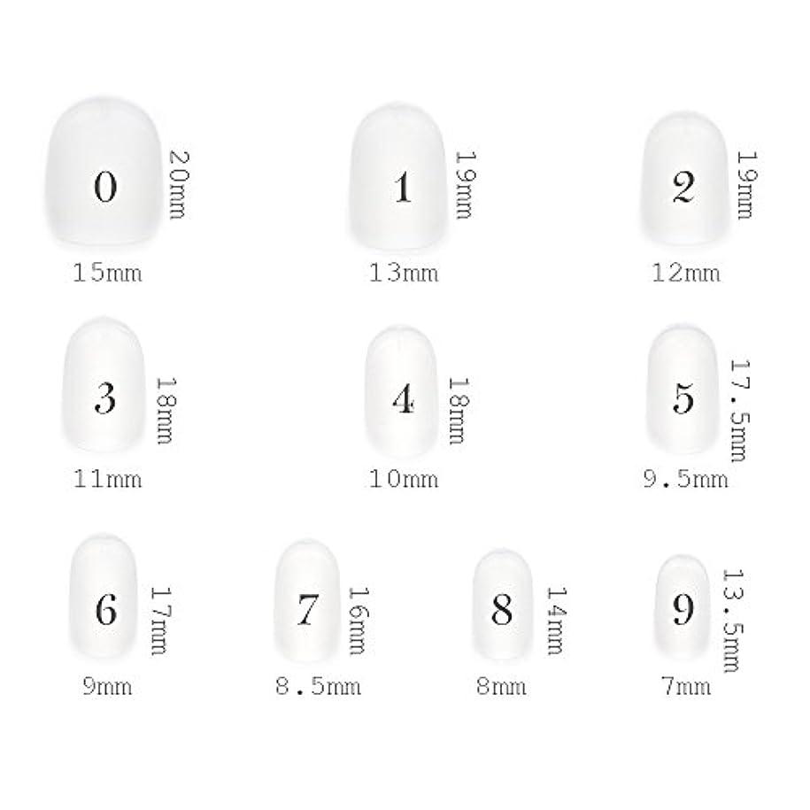 広まった田舎者アクティブショートラウンド型 クリアネイルチップ サンディング加工あり 500枚入り 10サイズ?各50枚