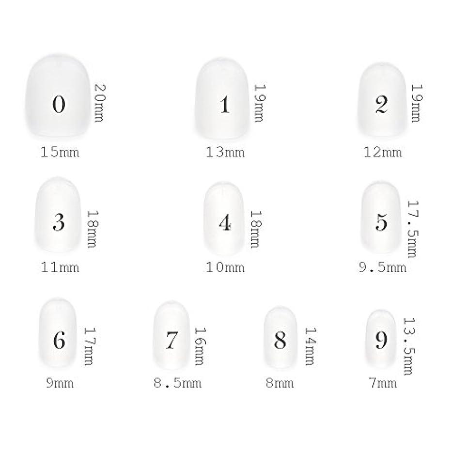 役に立たない矛盾防衛ショートラウンド型 クリアネイルチップ サンディング加工なし 透明 500枚入り 10サイズ各50枚