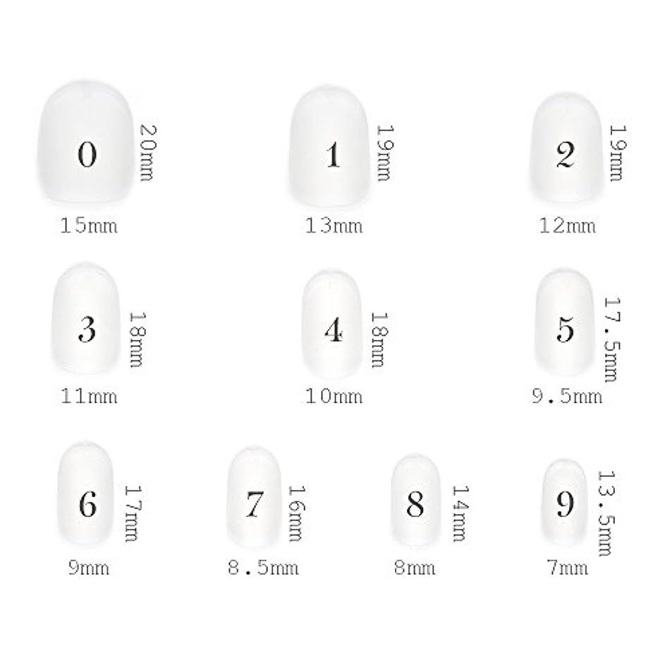ショートラウンド型 クリアネイルチップ サンディング加工あり 500枚入り 10サイズ?各50枚
