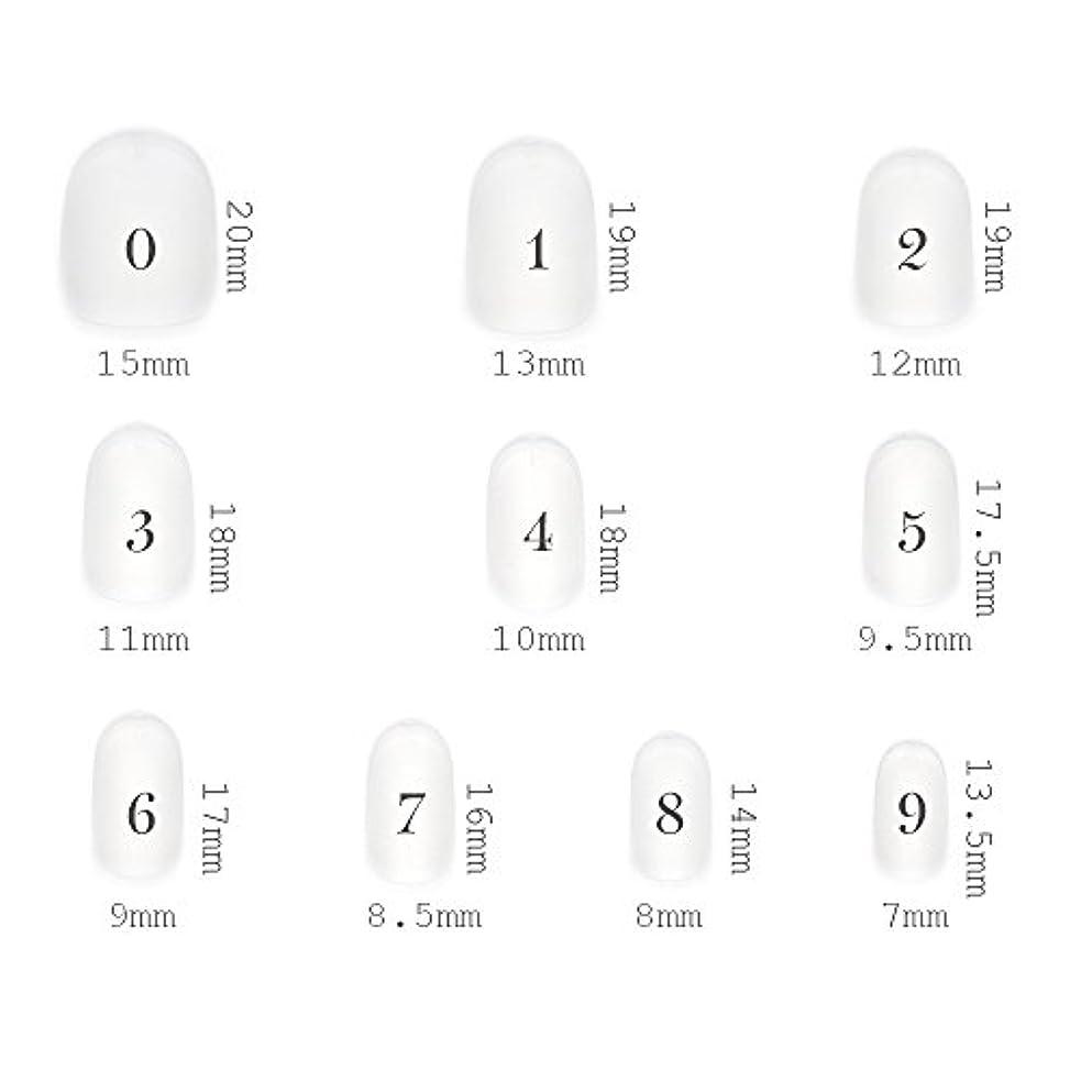 写真慈悲比較ショートラウンド型 クリアネイルチップ サンディング加工あり 500枚入り 10サイズ?各50枚