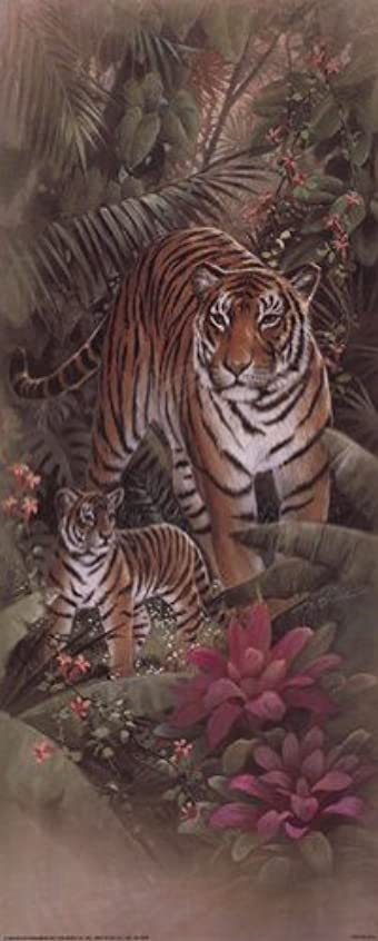 Tiger with Cubs by t.c. Chiu – 8 x 20インチ – アートプリントポスター LE_69734