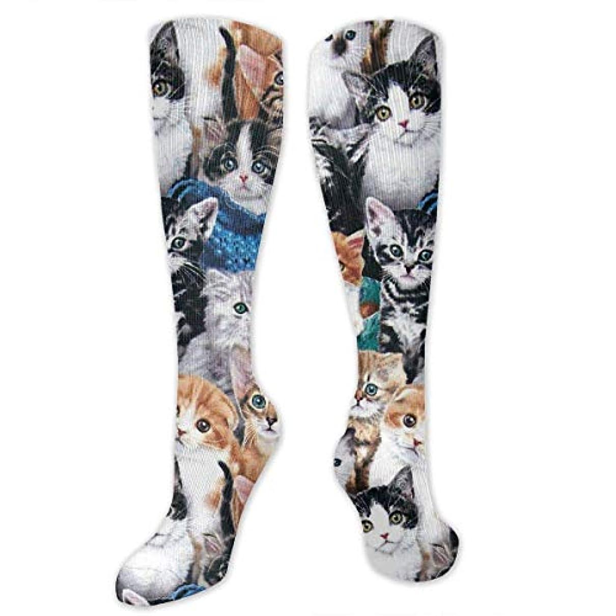 手数料メルボルンかわすセクシーな子猫の3つの印刷されたアスレチックソックスの余分な長いソックス膝の高い靴下