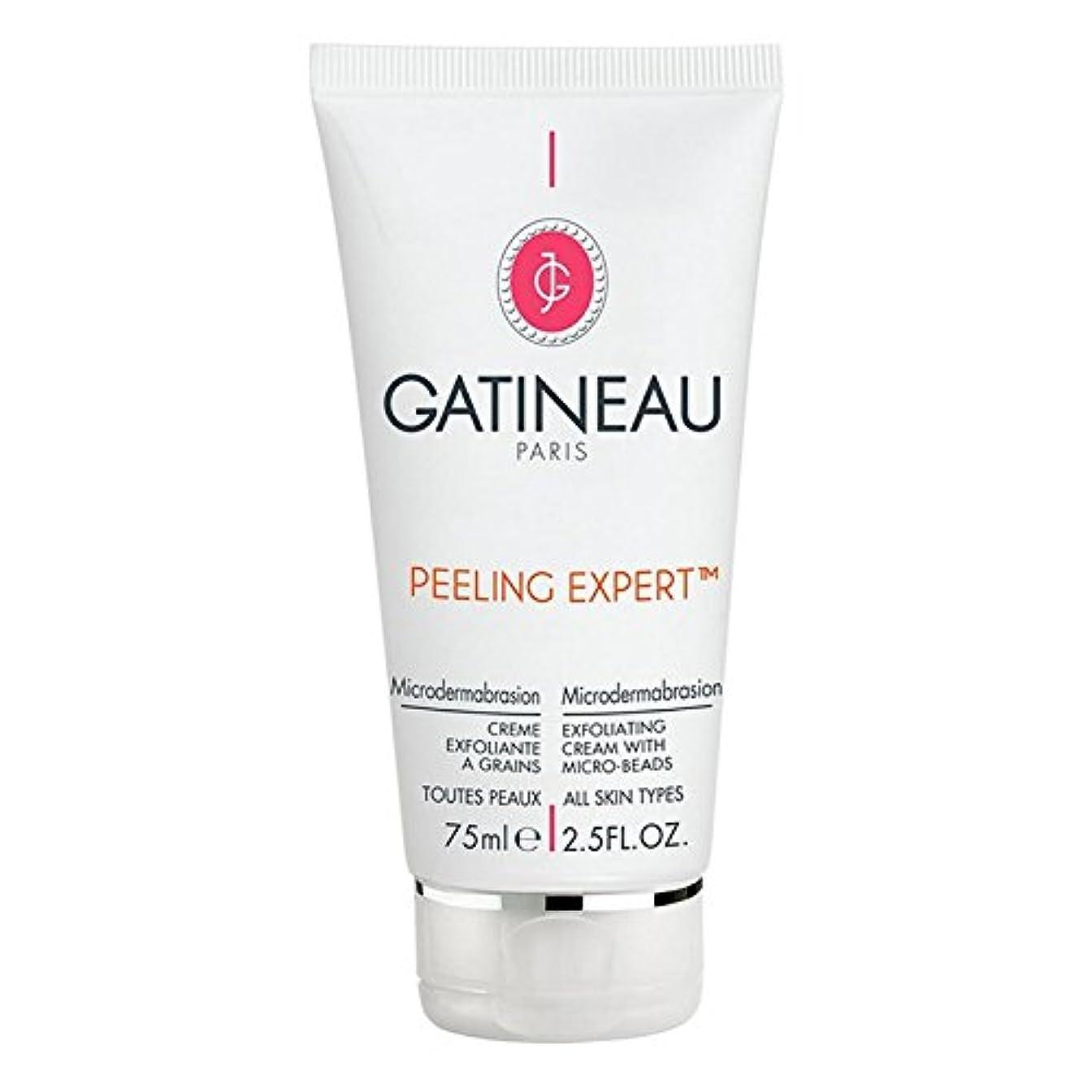 結婚式スチュワードトピックGatineau Pro-Radiance Microdermabrasion Cream 75ml - ガティノープロ輝きマイクロダーマブレーションクリーム75ミリリットル [並行輸入品]