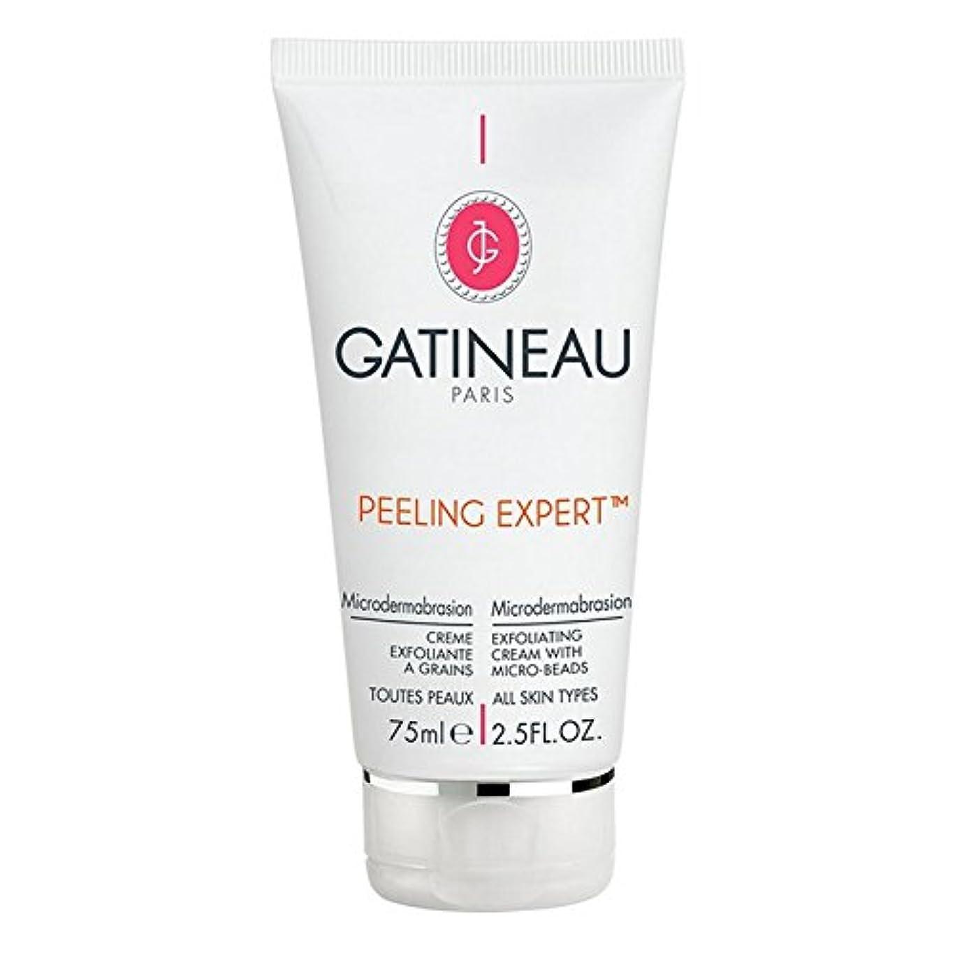 カエル口実ふくろうGatineau Pro-Radiance Microdermabrasion Cream 75ml (Pack of 6) - ガティノープロ輝きマイクロダーマブレーションクリーム75ミリリットル x6 [並行輸入品]