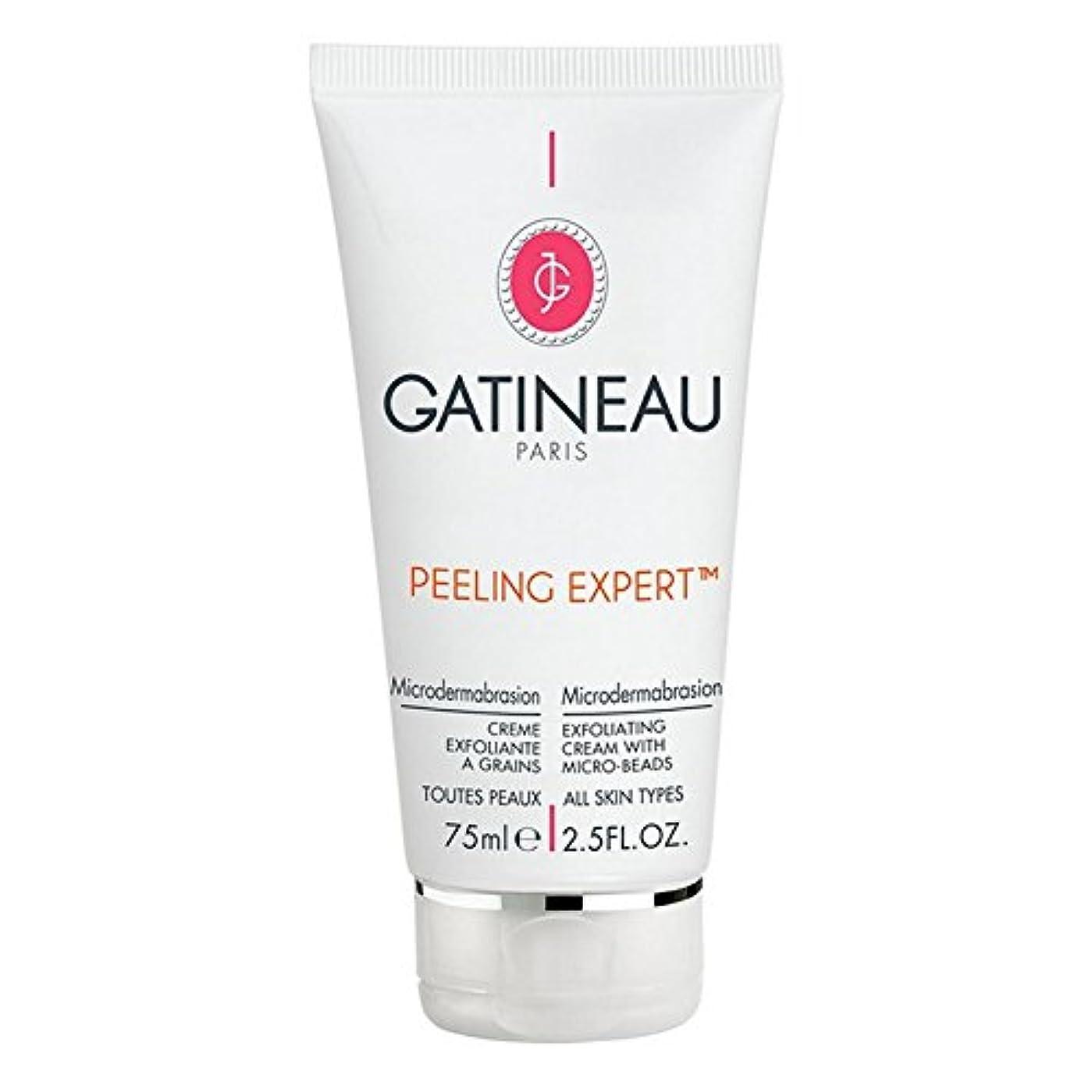 正直軽減する雨Gatineau Pro-Radiance Microdermabrasion Cream 75ml - ガティノープロ輝きマイクロダーマブレーションクリーム75ミリリットル [並行輸入品]