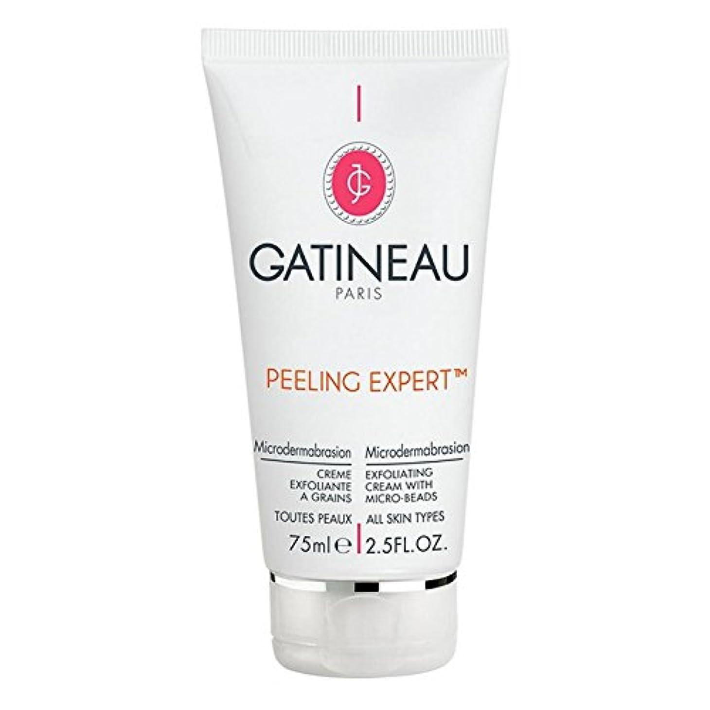 喉が渇いた調整ジャンピングジャックGatineau Pro-Radiance Microdermabrasion Cream 75ml (Pack of 6) - ガティノープロ輝きマイクロダーマブレーションクリーム75ミリリットル x6 [並行輸入品]