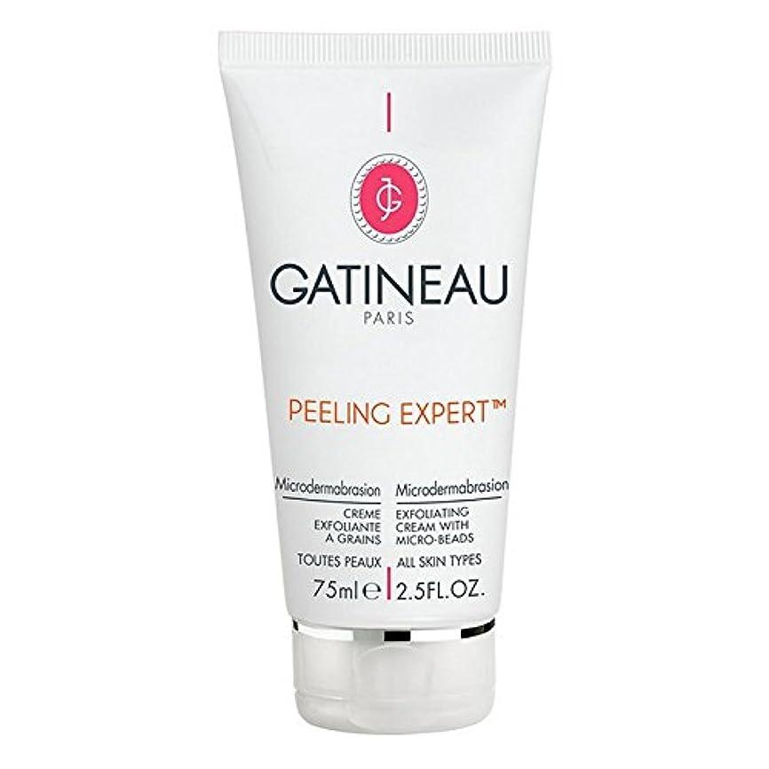 主に果てしない王室Gatineau Pro-Radiance Microdermabrasion Cream 75ml - ガティノープロ輝きマイクロダーマブレーションクリーム75ミリリットル [並行輸入品]