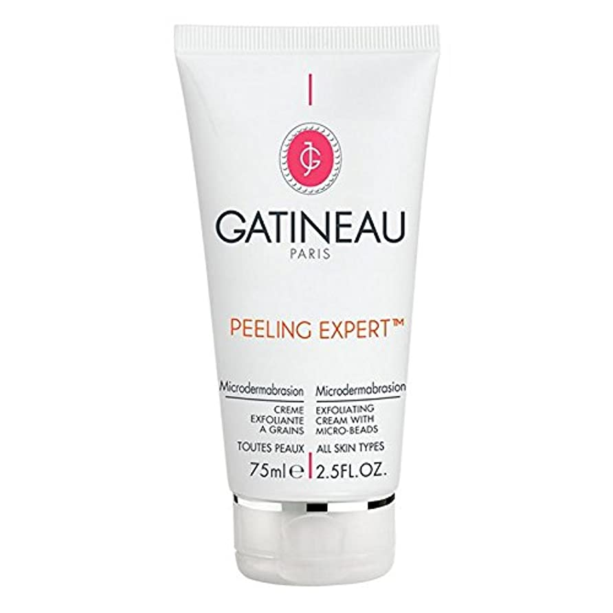 必要性入口調査Gatineau Pro-Radiance Microdermabrasion Cream 75ml (Pack of 6) - ガティノープロ輝きマイクロダーマブレーションクリーム75ミリリットル x6 [並行輸入品]