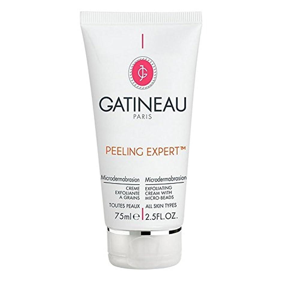 立証する乞食完璧Gatineau Pro-Radiance Microdermabrasion Cream 75ml (Pack of 6) - ガティノープロ輝きマイクロダーマブレーションクリーム75ミリリットル x6 [並行輸入品]