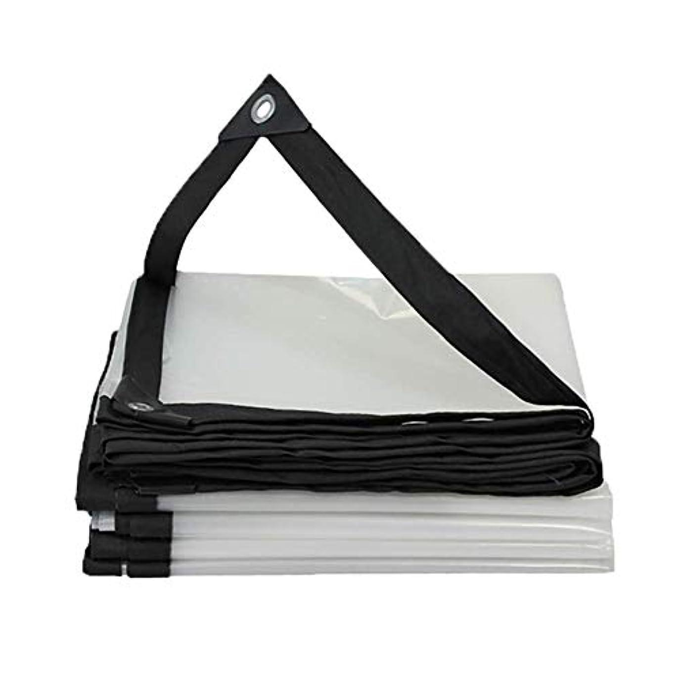 一月膨らませるツール19-yiruculture 防水防水シート、透明な日よけ、バルコニー窓防雨防水ポンチョ家庭用多目的テント (サイズ : 2x2M)