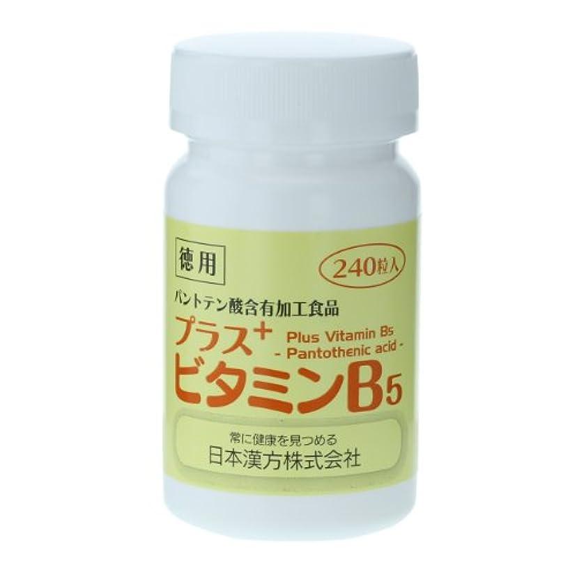 決して進化する構成員日本漢方 プラス ビタミンB5 徳用ボトル 240粒 パントテン酸含有加工食品