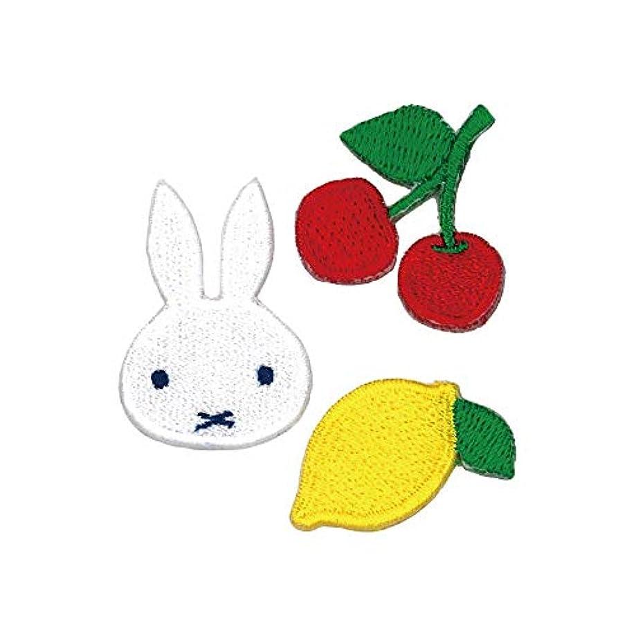 相談ハード尊敬するミノダ miffyオータムフルーツ ワッペン フルーツセット D02Y9678