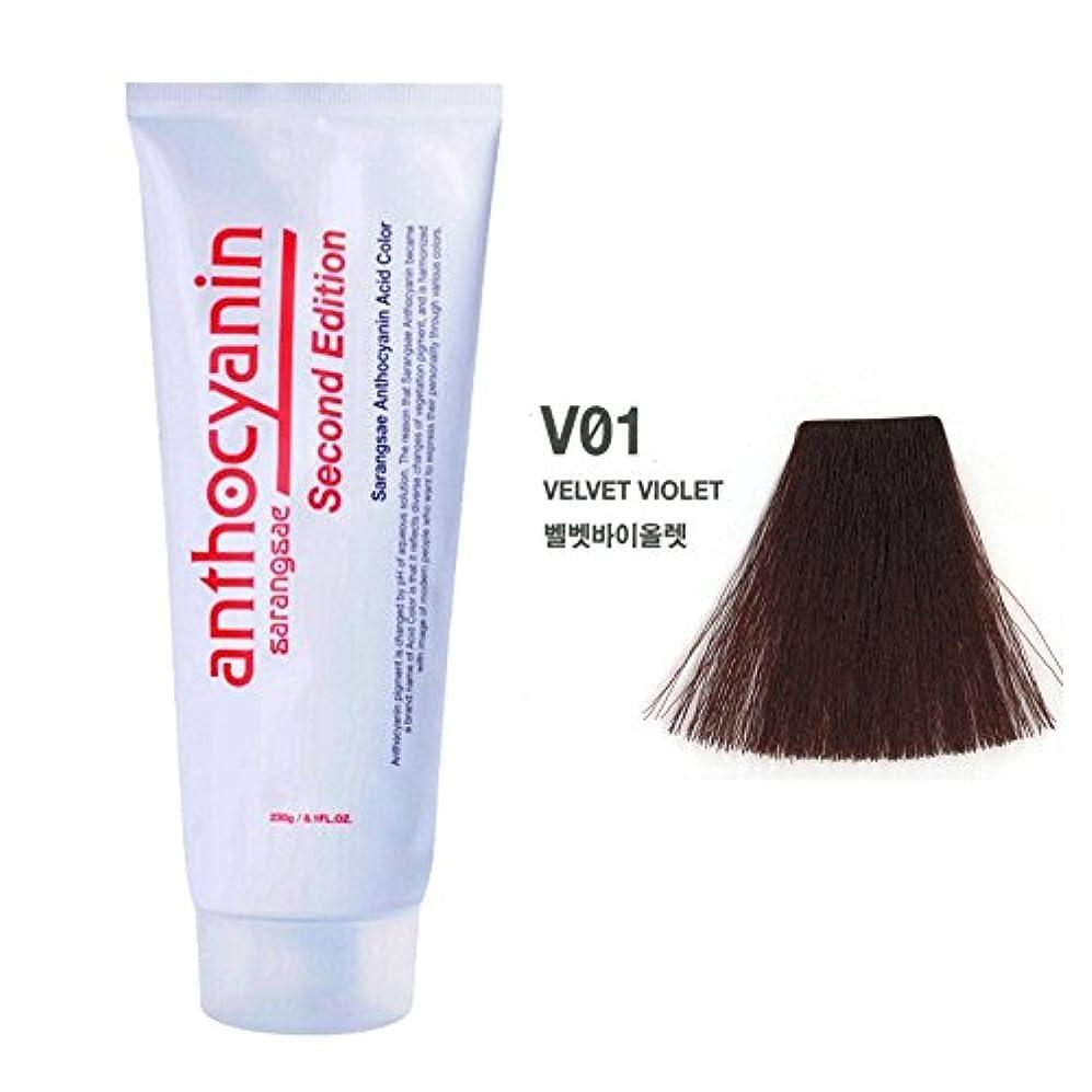 気味の悪い協力ヘア マニキュア カラー セカンド エディション 230g セミ パーマネント 染毛剤 ( Hair Manicure Color Second Edition 230g Semi Permanent Hair Dye) [並行輸入品] (V01 Velvet Violet)
