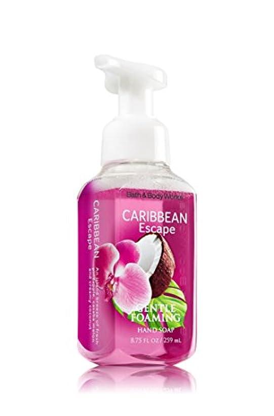 不適切な主流シニスバス&ボディワークス カリビアン エスケープ ジェントル フォーミング ハンドソープ Caribbean Escape Gentle Foaming Hand Soap [海外直送品]