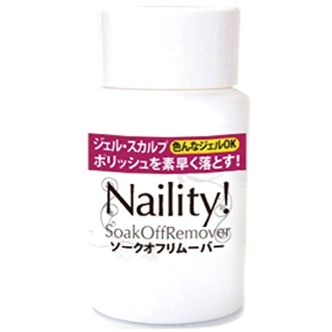 ヒープスコットランド人青Naility! ソークオフリムーバー (リフィル) 500mL