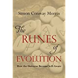 Runes of Evolution: How the Universe Became Self-Aware