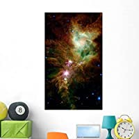 Section Christmas Tree Cluster Wall Mural by Wallmonkeys Peel and Stick Graphic (48 in H x 29 in W) WM214514 [並行輸入品]