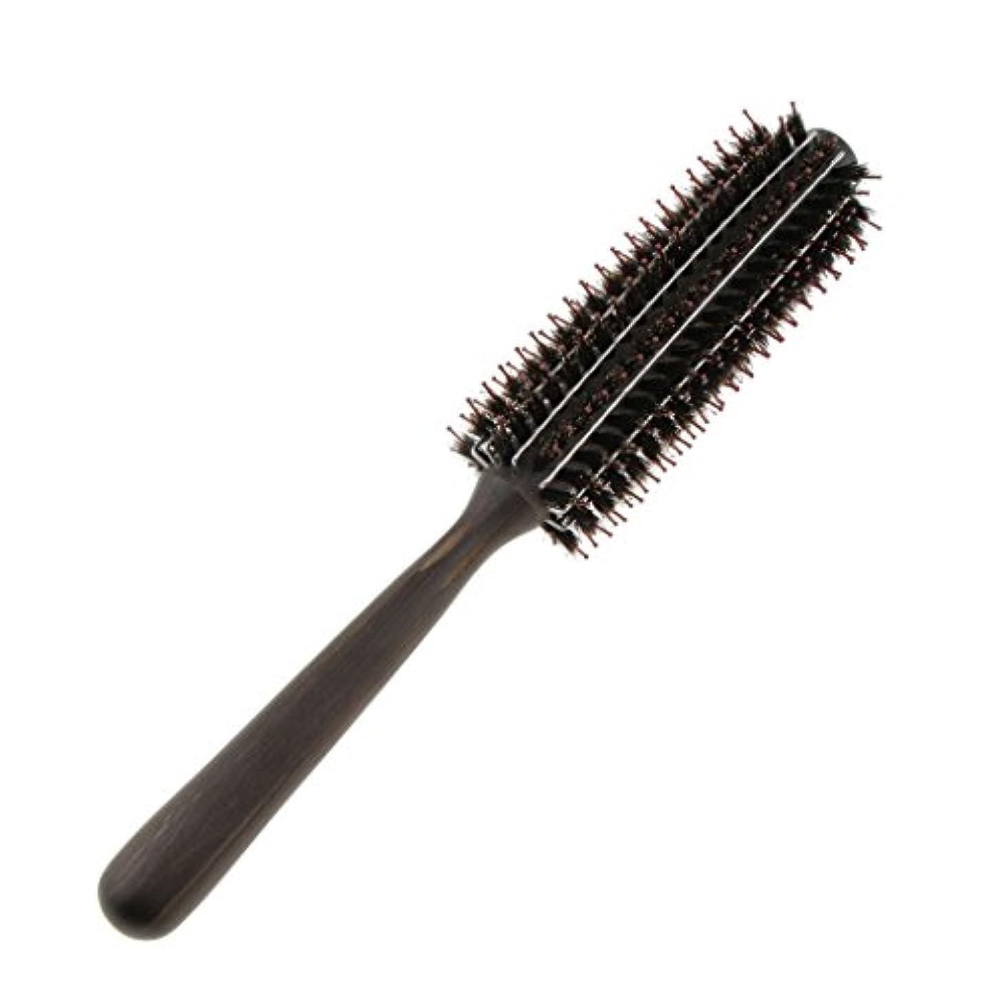 魅力的計り知れない共同選択Fenteer ロールブラシ カール 巻き髪 ヘア ブラシ ロール ヘアコーム 木製ハンドル 3サイズ選べる  - M